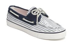 Navy Blue and White Sperrys