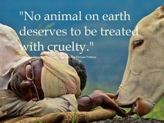 "Pro vegan: ""No animal on earth deserves to be treated with cruelty."""