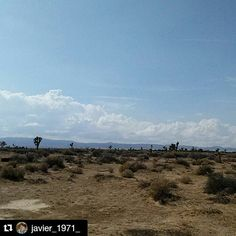 #Repost @javier_1971_ with @repostapp To get featured tag your post with #talestreet #lancaster #california #landscape  #naturehippys #nature_perfection #natureza #naturelover #landscape_lovers #outdoor #landscapes #naturephotography #natureaddict #landscape_captures  #twitter #nature_shooters #instagoodmyphoto #nature_seekers #naturegram #landscapestyles_gf #landscaperlovers #naturegstyles_gf #landscapelover #GreetTheOutdoors #natureobession #natureshot  #landscapephotography…