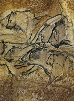 Panel of the Lions. Black drawing on rock. Length: c. 157 1/2 in. Chauvet Cave, Vallon-Pont-D'arc, Ardèche, France. End Chamber. Aurignacian. Photograph courtesy Jean Clottes.