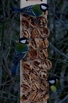 53 Free Diy Bird House Amp Bird Feeder Plans That Will