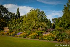 great comp garden | Great comp is a garden for plantsman. The amount of collection does ...
