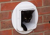 The sureflap microchip cat flap can be installed in glass with the the sureflap microchip cat flap can be installed in a wall with the aid of sureflap tunnel extenders and a mounting adaptor planetlyrics Images