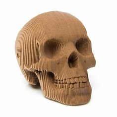 Cardboard Skull Kit. These striking design pieces are fun to construct, fantastic for display, and would make a fine addition to a skull collection or cabinet of curiosities! Made in the USA, these are one of our favorite new products!