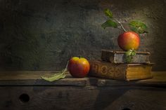 The visible creation. by Mostapha Merab Samii on 500px