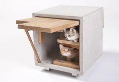 Modern kitty houses