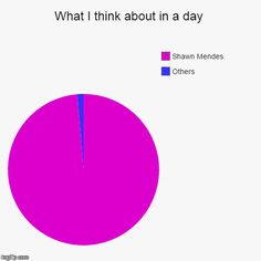 What I think about in a day   Others, Shawn Mendes   image tagged in funny,pie charts   made w/ Imgflip pie chart maker