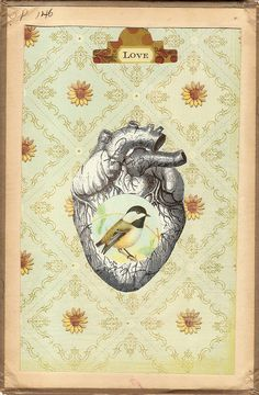 ANATOMICAL HEART AND.....   .