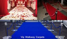 Free Classified Ads, Red Carpet Event, Garden Supplies, Walkway, Garden Furniture, Vip, Patio, Stylish, Outdoor Decor