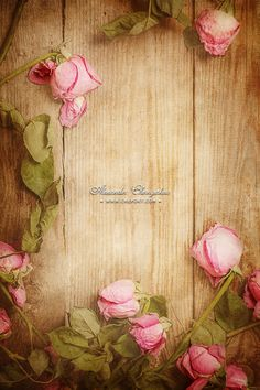Wilted, withered roses on a wooden floor