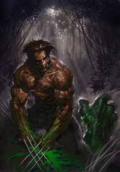 Wolverine vs Hulk by Keu Cha *