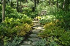 A shaded garden path