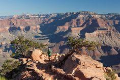 Grand Canyon National Park, USA       Der Grand Canyon National Park ist der 15. - und wohl bekannteste - Nationalpark der Vereinigten Staaten von Amerika. Er hat eine Gesamtfläche von knapp 5.000 km².