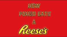HOW POHGO EATS A REESE'S CUP