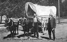 Teresa this is the wagon we saw in Baker City that got me so excited! Ezra Meeker at Boise with ox-team ca. 1906