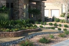 Xeriscape for living in Utah AND a drought year. Watering a lawn seems like a wa. Xeriscape for li Outdoor Landscaping, Front Yard Landscaping, Backyard Patio, Outdoor Gardens, Zero Scape, Utah, Front Yard Decor, Drought Tolerant Landscape, Lawn And Garden