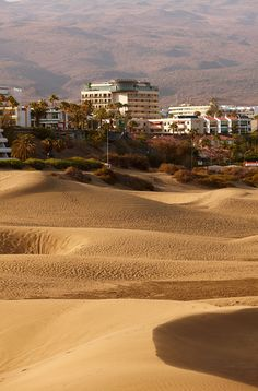 Bohemia Suites & Spa, a sophisticated lifestyle oasis for adults-only that's surrounded by the volcanic beauty of Gran Canaria - check our room availability! Canario, Canary Islands, Places Ive Been, Spain, Country Roads, Exterior, Beach, Water, Hotels