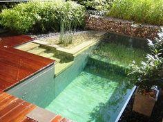 Zwemvijver met trap op een bijzondere plaats gepind door Gilbert de Jong.
