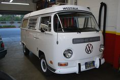 white westy. perfect.