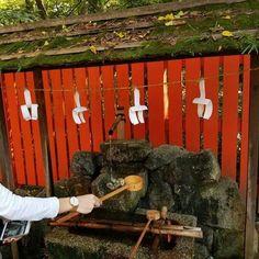 Travelling to #feelthegravithin | Shop link in bio | Free worldwide shipping Photo by @thegreenlemonade - - - #osaka#nara#tokyo#hiroshima##kyoto#adventure #thegreenlemonade #weekendfeels #huffposttravel #vacationwolf #cnntravel #roundtheworld #adventurous #getlost #alwaysgo #igworldglobal #enjoythejourney #sheisnotost #searchwandercollect #placestovi sit #wandering #darlingescapes #fernweh #openmyworldd #trave pic #bbctravel#roam theplanet