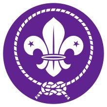 World Organization of the Scout Movement – Wikipedia