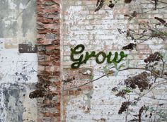 I might have to become a gardening graffiti artist... a garditi artist. Multidisciplinary designer Anna Garforth, who is based in East London, often works with adorning walls with bio-degradable public art in the form of moss graffiti. The geometric one she did for an architecture firm is especially pretty.