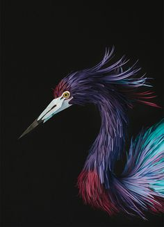 It's been over a year since we last checked in with paper artist Diana Beltran Herrera (previously here and here) whose skill in crafting the fine details of birds using paper has continued to evolve. Herrera's work has begun appearing in several galleries and exhibitions aro