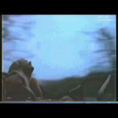 Rap Song Lyrics, Music Video Song, Rap Songs, Music Videos, Vibe Song, Hype Wallpaper, Jim Morrison Movie, Vintage Videos, Aesthetic Songs
