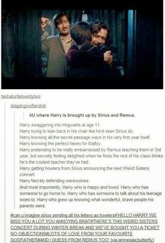 If Harry was raised by Sirius and Remus.