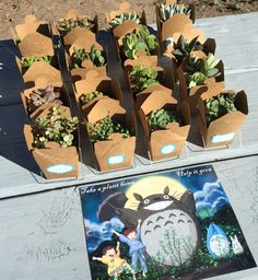 How to throw a Totoro party! Plants serve as Totoro party favors.