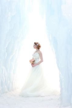 Composite rose at Midway Ice Castle