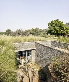 The Riparian House / Architecture BRIO
