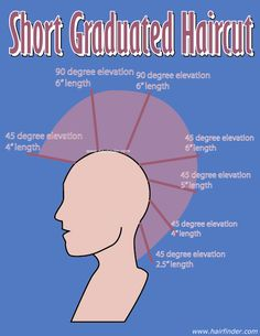 diagram of head for showing haircuts - Google Search | Haircuts ...