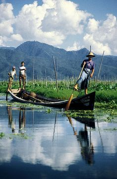 Myanmar Fisherman Leg-Rowers and Floating Vegetable Gardens in Inlay Lake, Southern Shan State, Burma/Myanmar