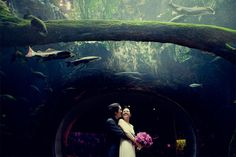 Bride and groom portraits inside aquarium at California Academy of Sciences wedding, San Francisco wedding photography by Tinywater Photography