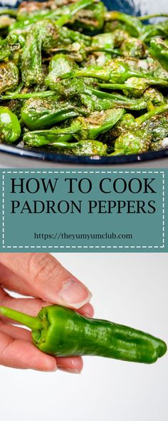 How to cook Padron Peppers. The best and only Padron Pepper recipe you will need. 3 ingredients only & 5 minutes of cooking. I love this vegan recipe. Healthy Low Carb Recipes, Vegan Recipes, Meze Recipes, Healthy Meals, Yummy Recipes, Vegetarian Recipes Dinner, Lunch Recipes, Restaurant Recipes, Gastronomia