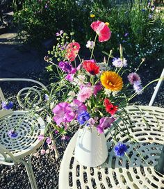 "2 Likes, 1 Comments - Janette McGowan (@jingsjanette) on Instagram: ""Wildflowers freshly picked from my garden _ 🌸  #wildflowers #poppies #garden #nature #bees…"""