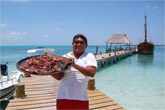 Después de disfrutar un delicioso Pescado Tikin Xic (especialidad de la gastronomía yucateca), los visitantes pueden hacer un recorrido a la laguna Puerto Viejo, el sitio de anidación de Pelícano Café más grande de la costa atlántica de México.