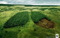 Publicité - Creative advertising campaign - WWF