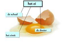 Binnenkant van het ei Dutch Language, Coq, Vocabulary, Learning, School, Kids, Animals, Crowns, Baby Chicks