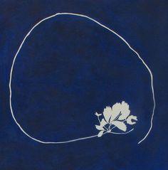 Sun Prints, Nature Prints, Aesthetic Images, Blue Aesthetic, Alternative Photography, Linda Ronstadt, Cyanotype, Leaf Art, Fabric Painting