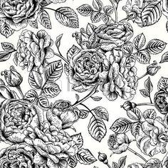 blanco y negro vintage: Vector el modelo inconsútil de la vendimia con las rosas inglesas. Ilustración blanco y negro.