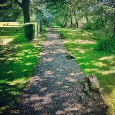 Holiday Cottages Wexford at The Old Deanery, Come stay at our luxurious Holiday Cottages. Cow House, Duck House, Walkway, Garden Paths, Cottages, Stepping Stones, Irish, Old Things, Gardens