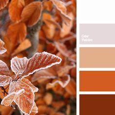 autumn color, beige, bright orange, burgundy, color match, color solution for home, colors of autumn, grey, hoarfrost color, orange color, shades of orange, white color.