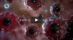 "This one inspires me every time!  This is a new high definition (HD) dramatic video choreographed to powerful music that introduces the viewer/student to the Science of Biology. It is designed as a motivational ""trailer"" to be shown by teachers in Biology and Physical Science classrooms in middle school, high school and college as a visual Introduction to the wonders of life."