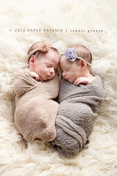 Shabby Chic Newborn Twin Girls {Delray Beach Newborn Photographer} | Paper Petunia Family Photography
