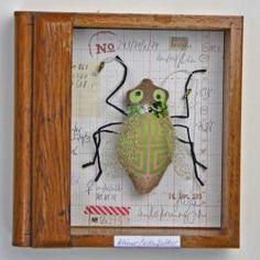 Schaukastenbild Fliegenviech Nr. 187