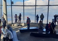 Do you want to hikes around Hobart, Tasmania? We guide walking tours in Hobart on kunanyi/ mount Wellington. Come with us to explore the Mt Wellington Hobart. Top Of The World, Tasmania, Walking Tour, Walk On, Things To Do, Hiking, Join, Tours, Explore