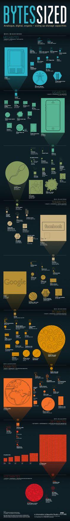 infographic showing storage capacities sizes. Megabytes till Yottabytes