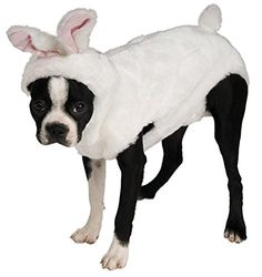 Rubies Costume Halloween Classics Collection Pet Costume, X-Large, Bunny Hoodie Now your favorite four-legged member of the family can join the fun. With a pet costume from Read  more http://dogpoundspot.com/rubies-costume-halloween-classics-collection-pet-costume-x-large-bunny-hoodie/  Visit http://dogpoundspot.com for more dog review products